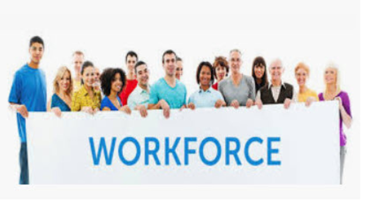 The Unemployment Rate vs. the Labor Force Participation Rate