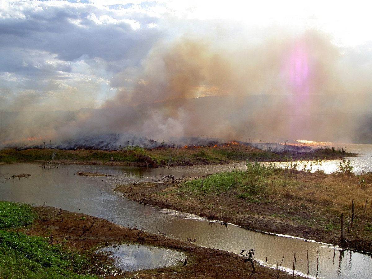 The use of slash-and-burn farming technique in Ceará, Brazil contributes to the already mass scale deforestation in the Amazonian forest.