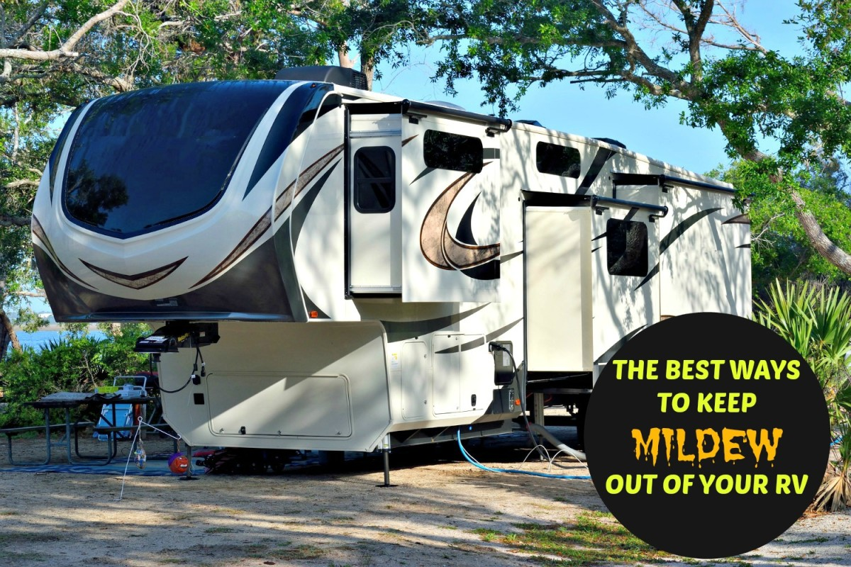 The Best Ways to Keep Mildew Out of Your RV