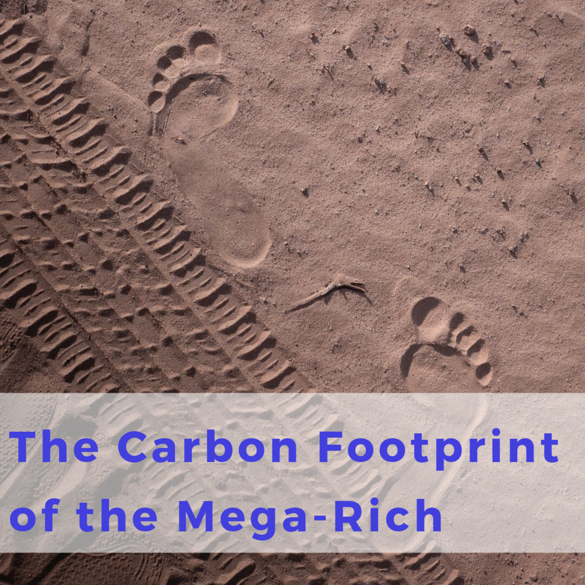 What is the carbon footprint of the world's wealthiest one percent?