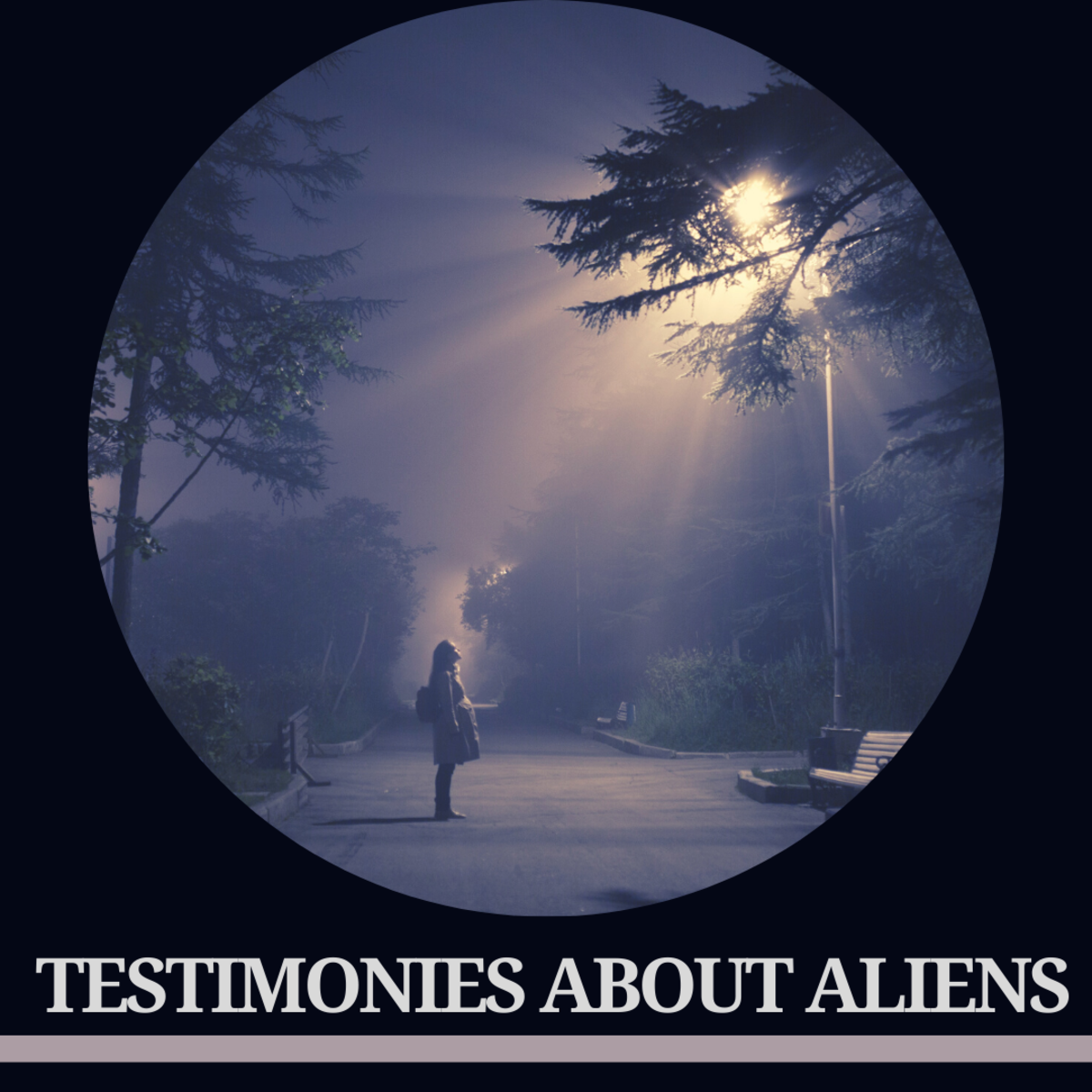 These are some of the most credible UFO testimonials on record.
