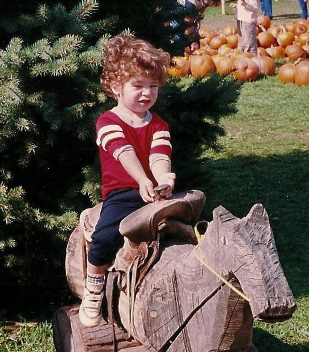 A playground at a local pumpkin farm offers all kinds of fun!