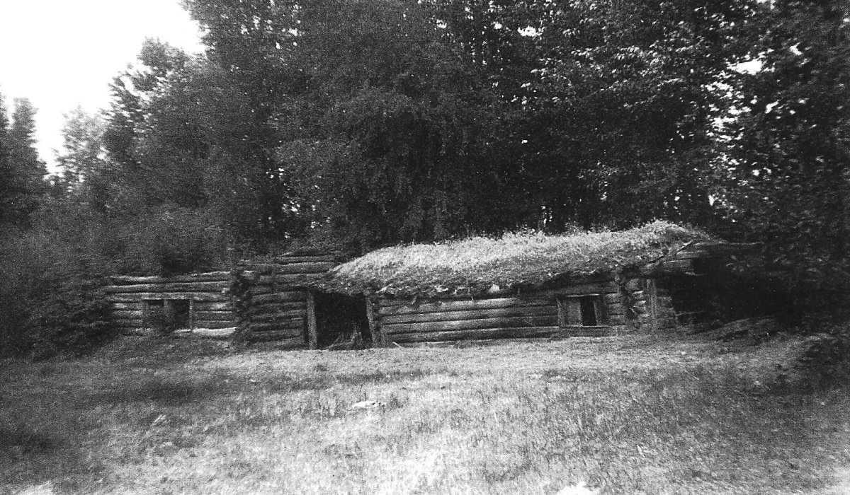 This sod-covered log cabin caved in circa 1972.  It was where Rosa and her oldest three children arrived after faring their long voyage from Genoa, Italy.