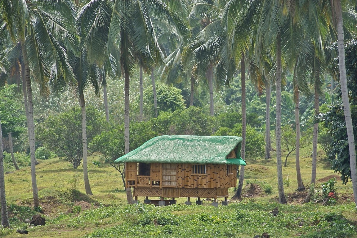 "Fruits and Vegetables in the Philippine Folk Song ""Bahay Kubo"" (Nipa Hut)"