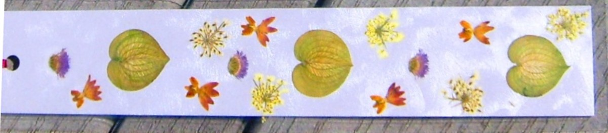 Create Pressed-Flower Bookmarks