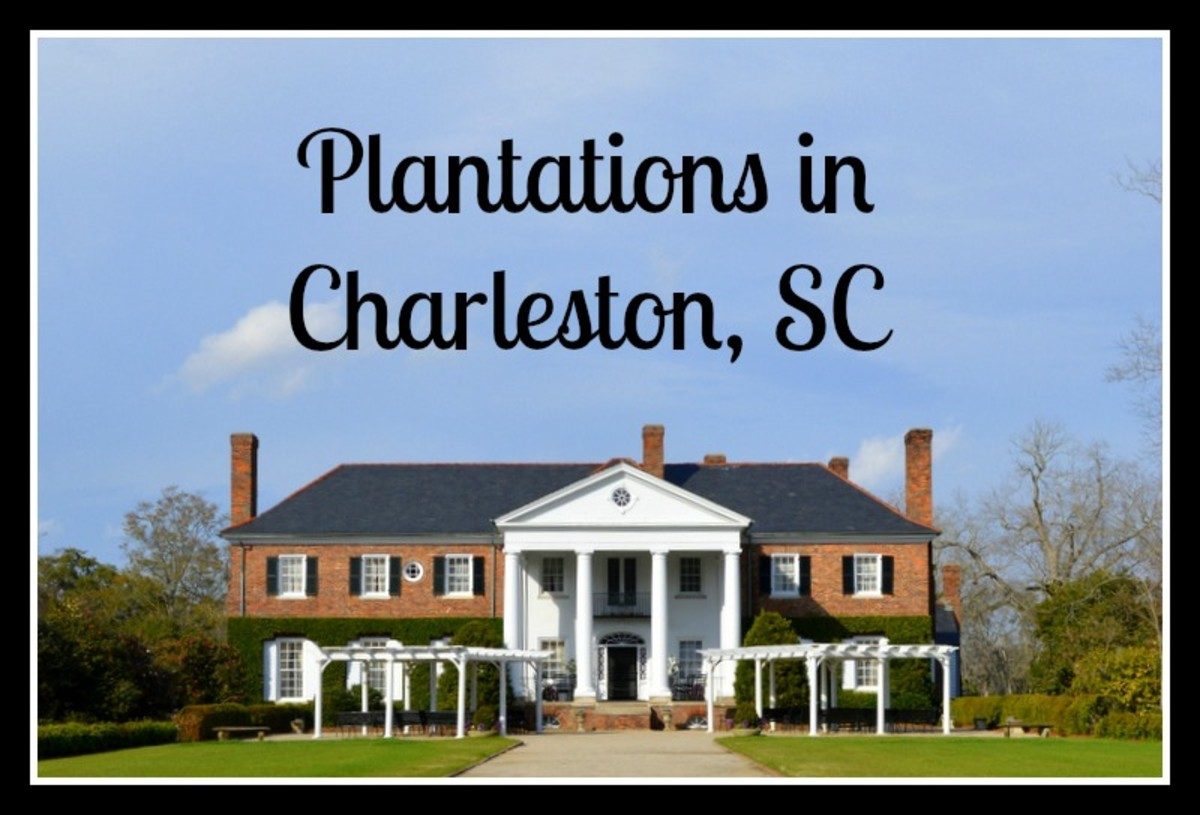 Best Plantations to Visit in the Charleston, SC Area