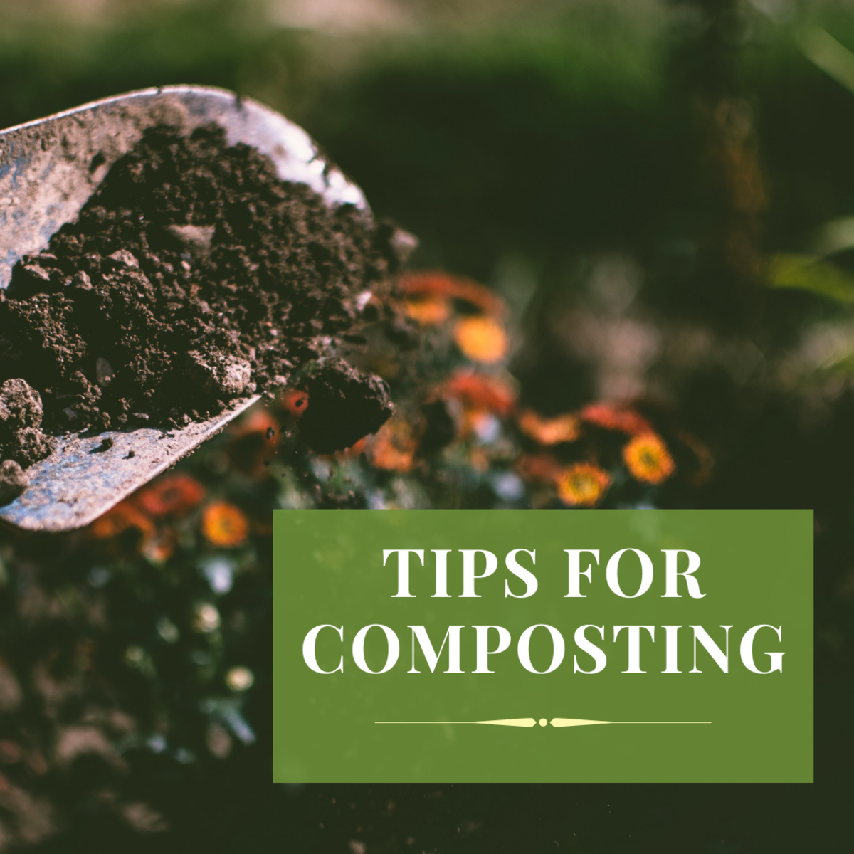 Tips for composting.