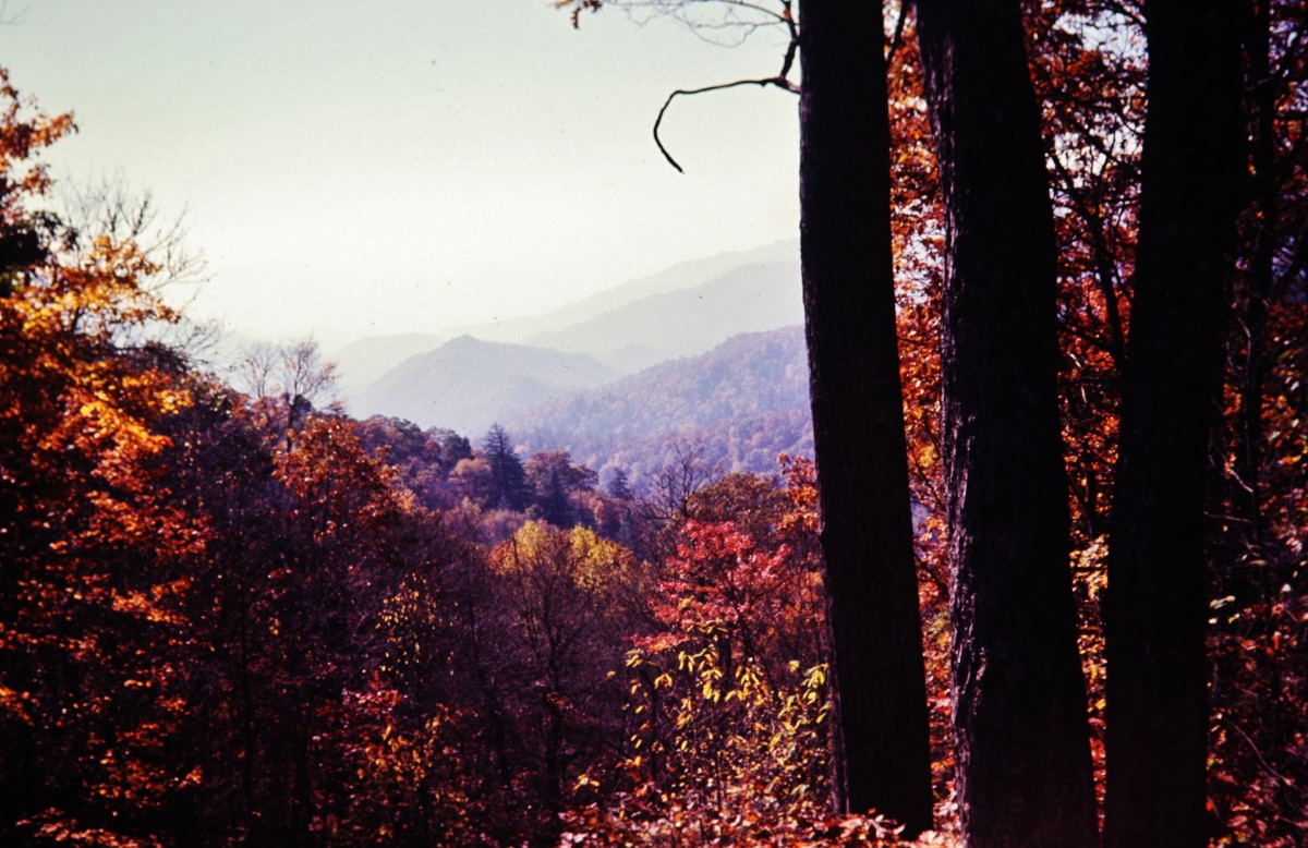 The Great Smoky Mountains in the fall season