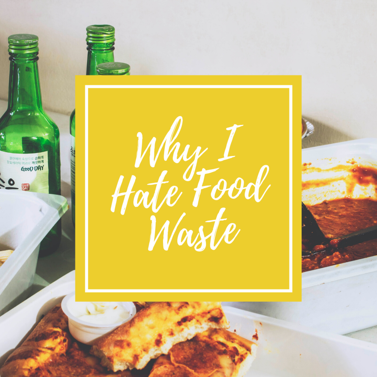 Food waste is a major problems that we all need to get a handle on!