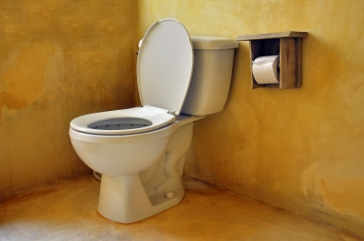 To leave up? or down? The toilet seat battle