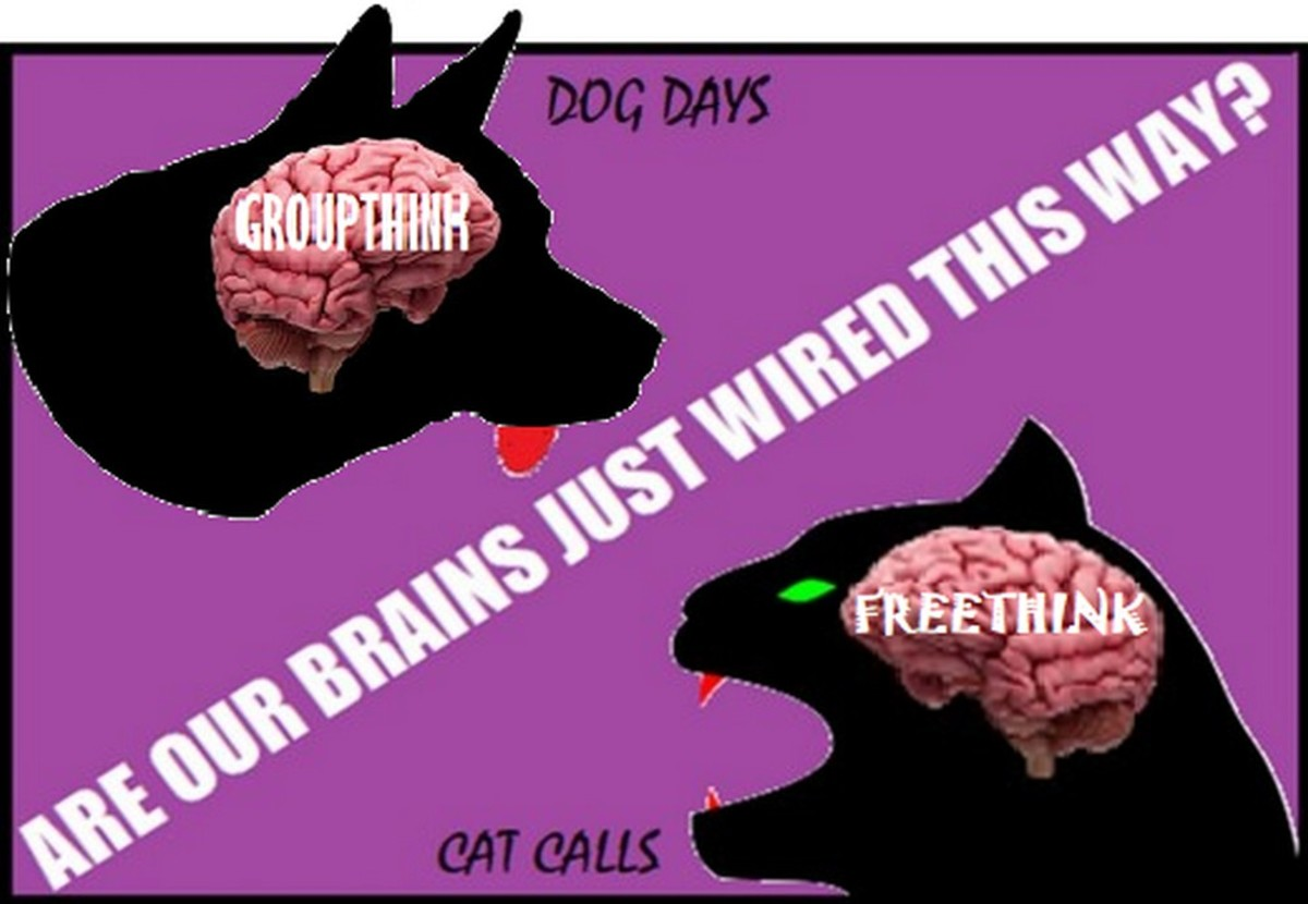 Angst: The Difference Between Libertarian Cats and Socialist Dogs