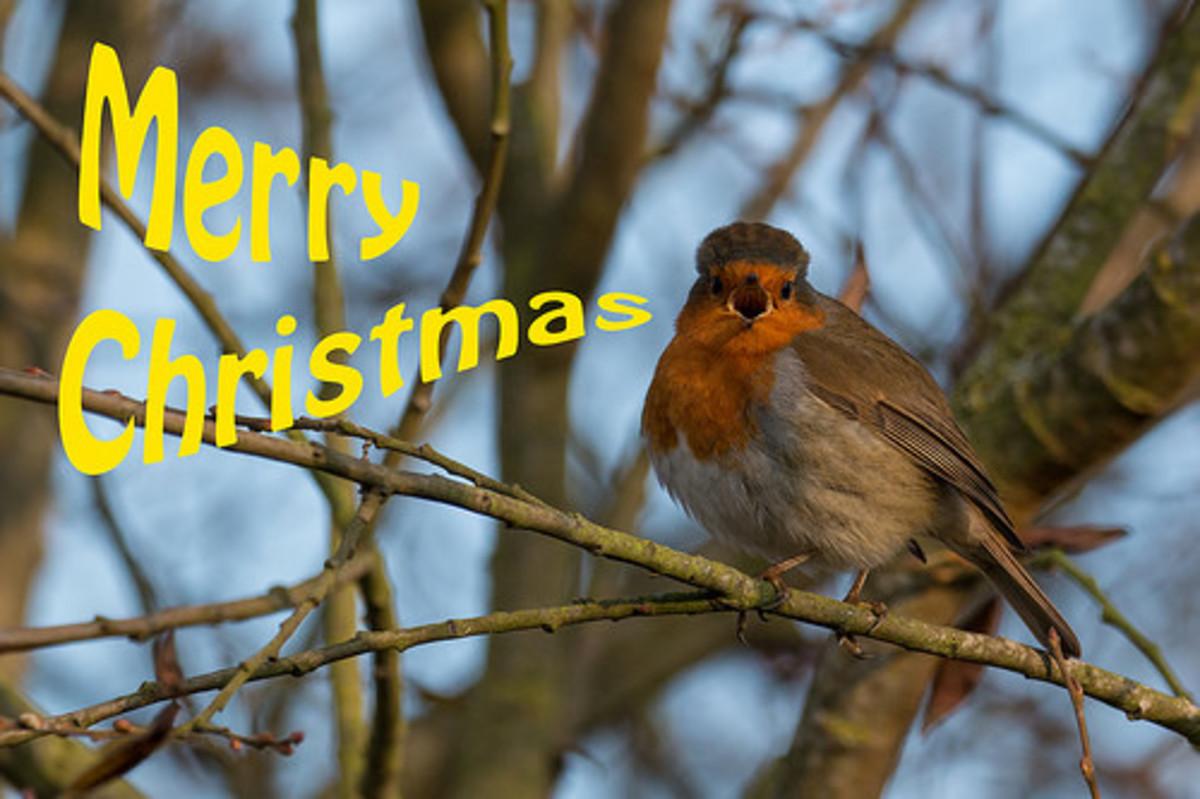 """I Say """"Merry Christmas"""""""
