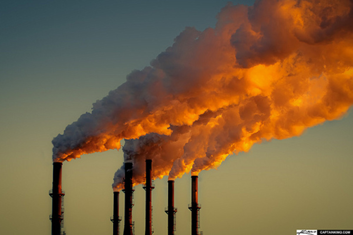 The Dollars and Sense of Carbon Pricing