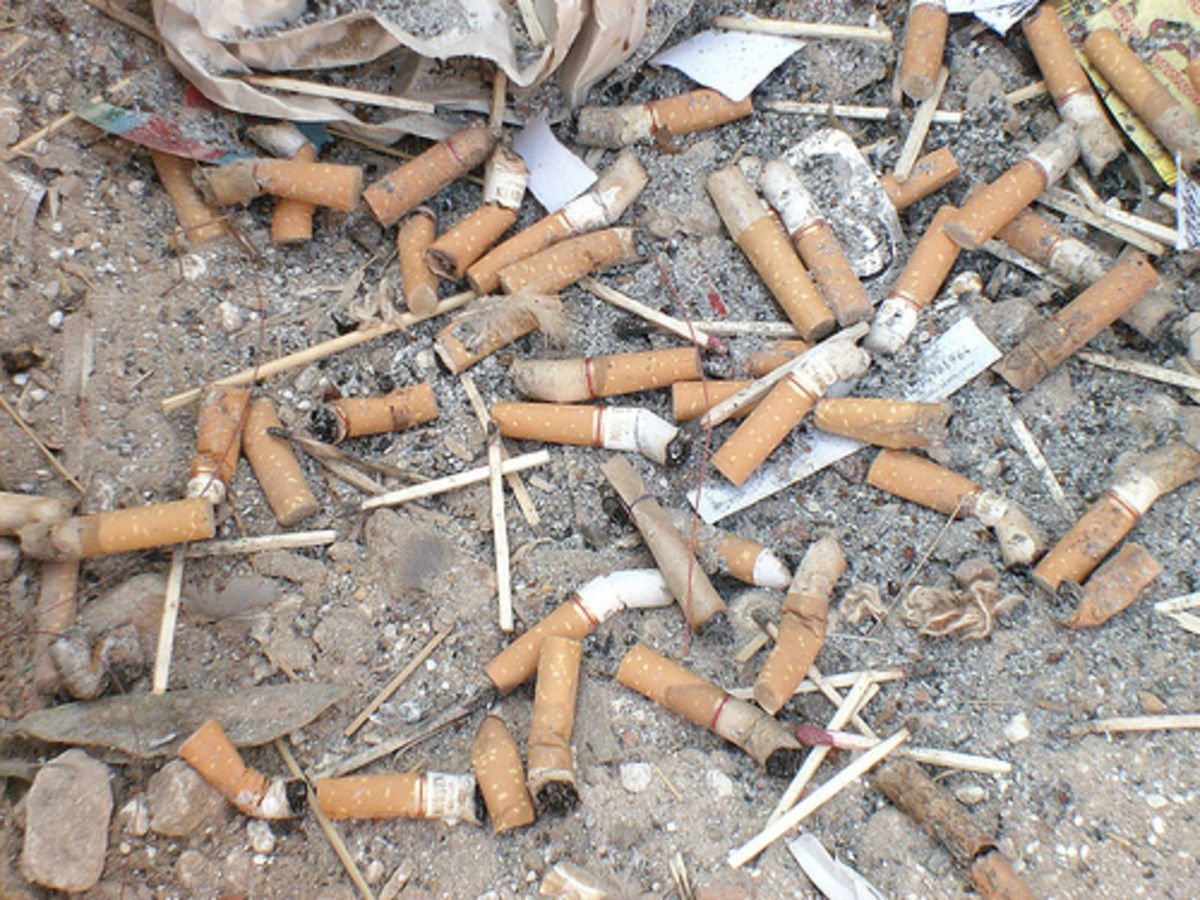 The Toxic Trash of Cigarette Butts