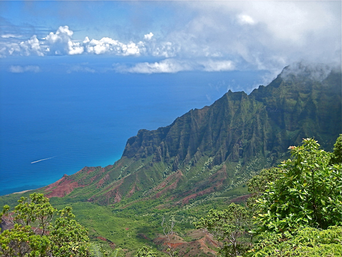 View of Napali Coast from Kokee State Park.  This is one of the must-see spots on the island.
