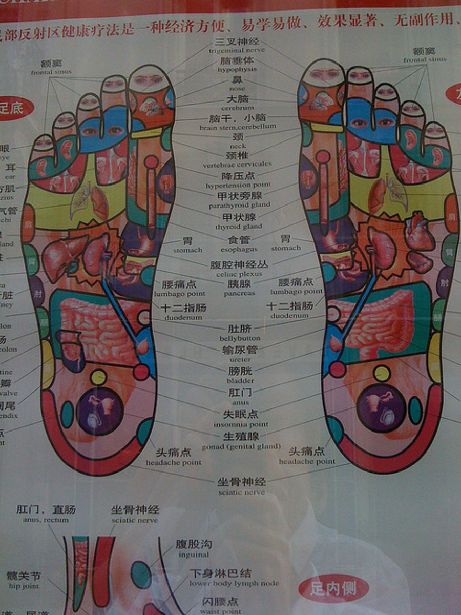 Most reflexologists have a chart showing how the areas of the feet correspond to the areas of the body.