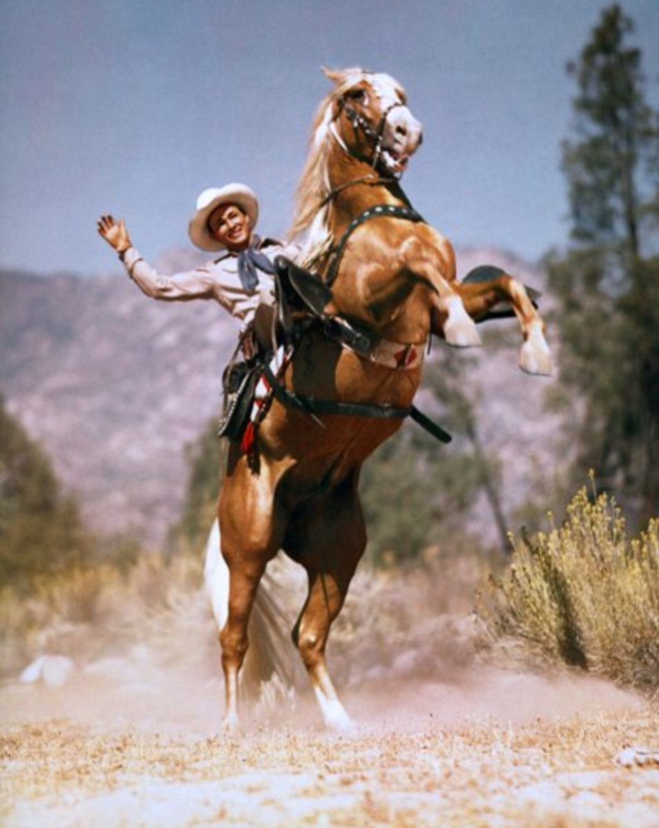 image Silver stallion being ridden cowgirl