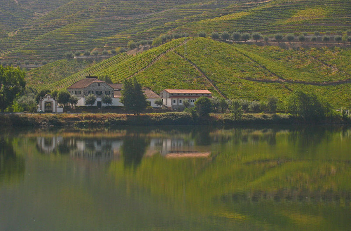 The Best Wineries to Visit in Portugal