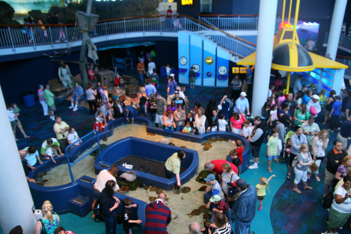 """The Discovery Room at the aquarium in Myrtle Beach. This is one of three """"rooms"""" in the aquarium."""