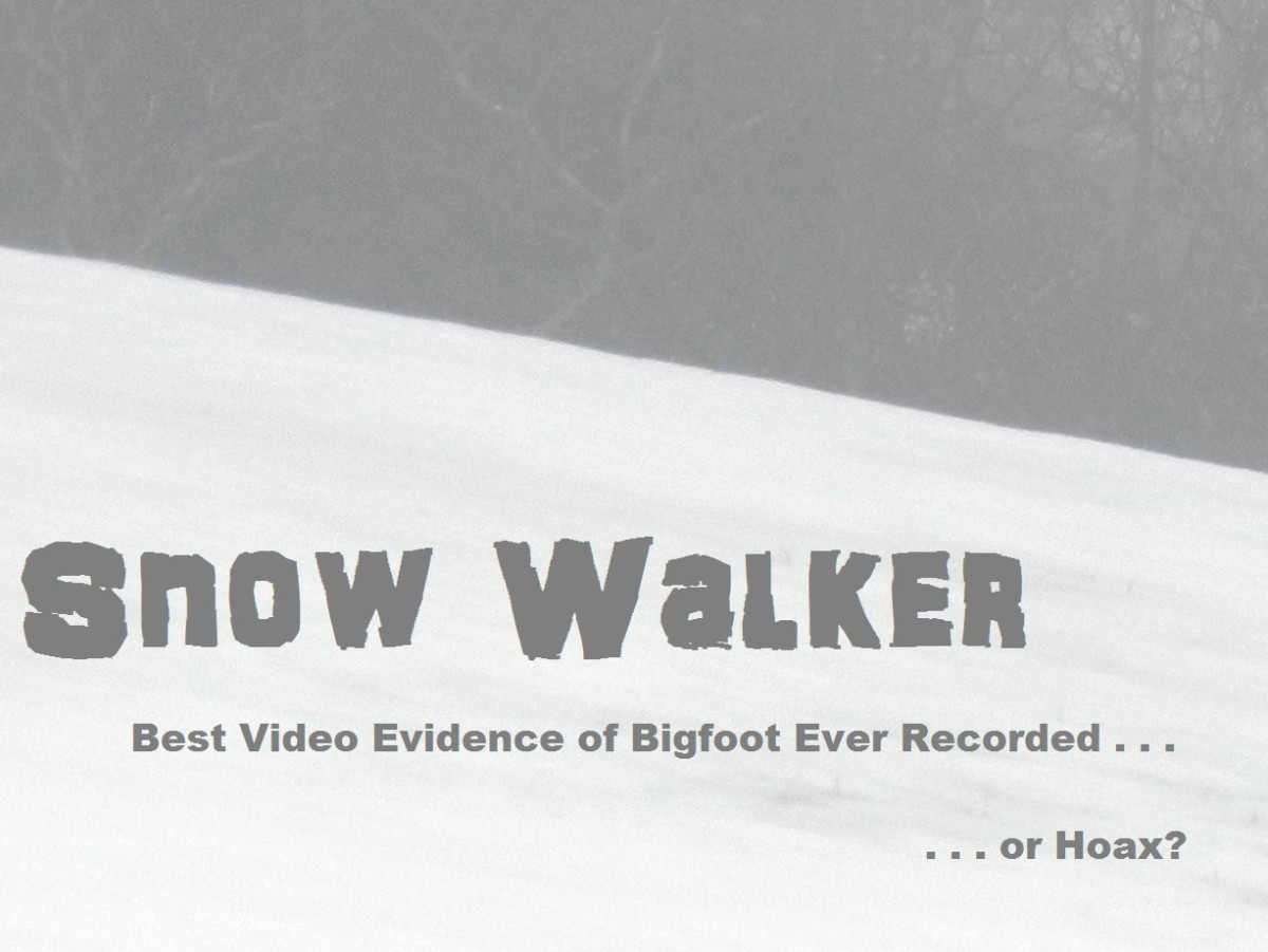 Snow Walker: Best Bigfoot Video Evidence Ever or Hoax?