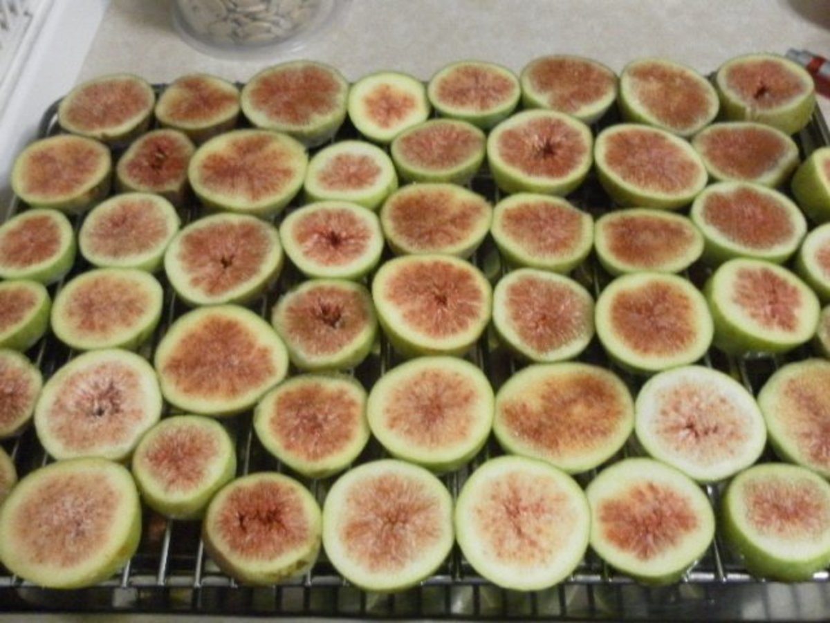 Cut figs ready for the oven.