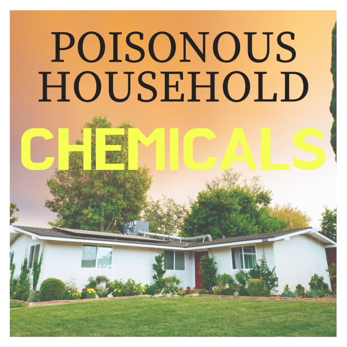 Learn how to ID poisonous substances in your home.