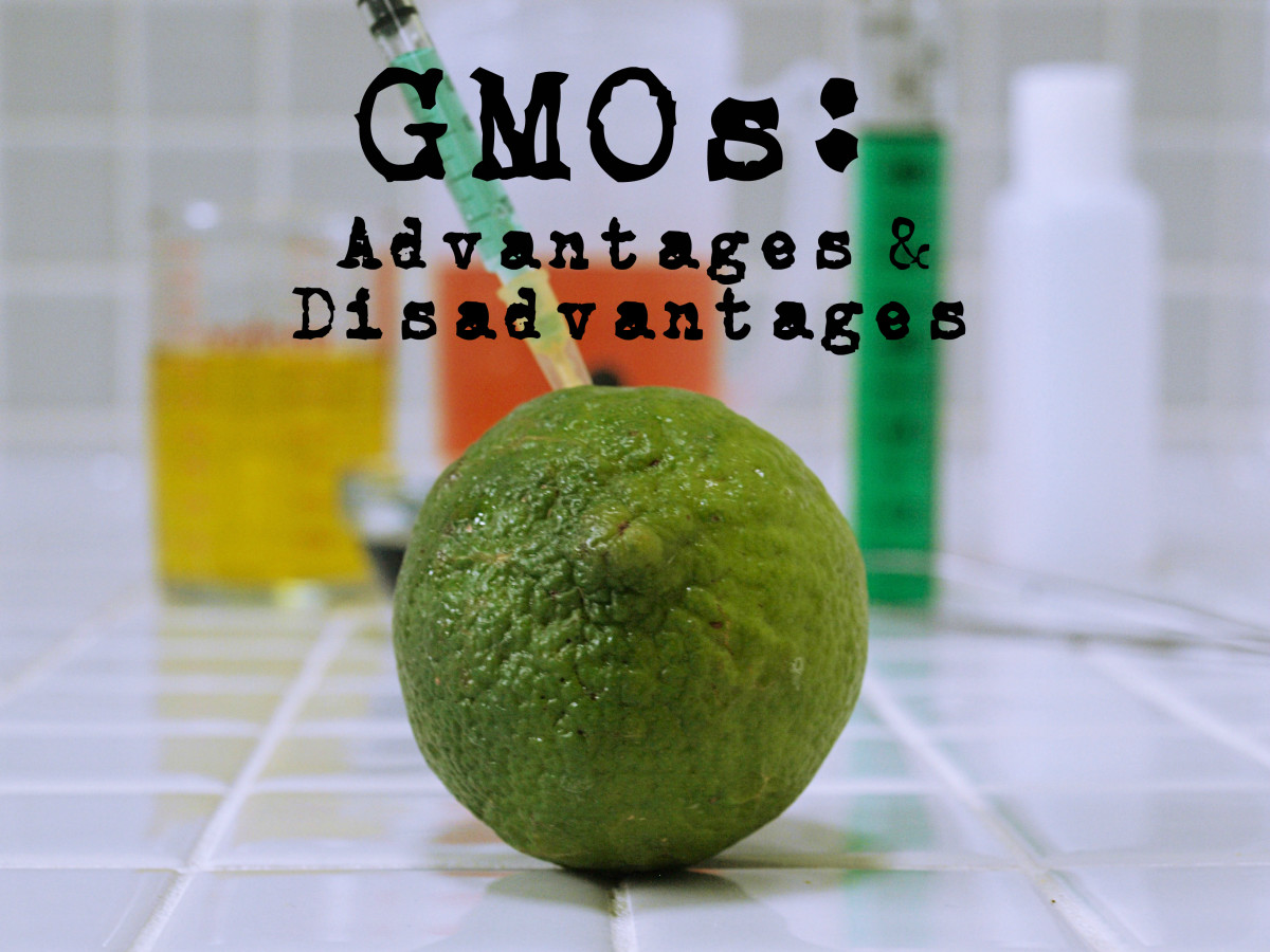 How Does Gmo Make Foods Healthier