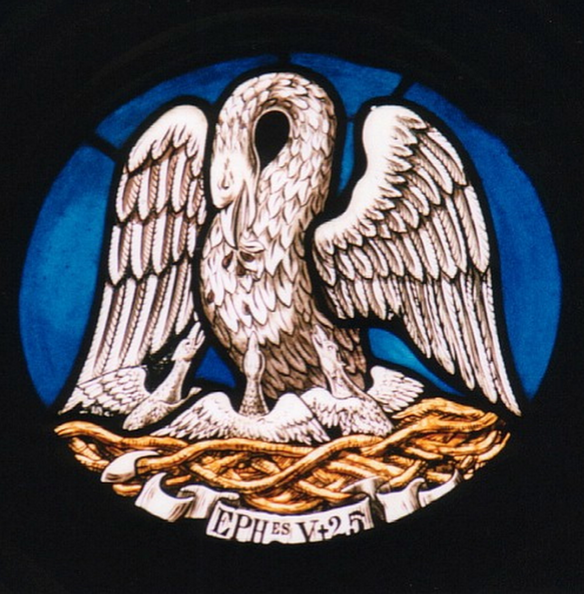 The medieval symbol of the pelican piercing its breast to nurse its young was a biologically inaccurate but powerful object lesson.
