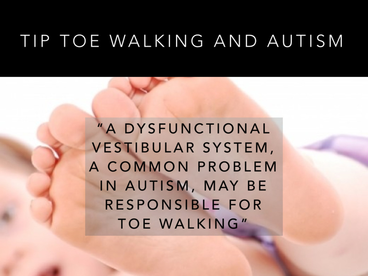 A dysfunctional vestibular system, a common problem in autism, may be responsible for toe walking.