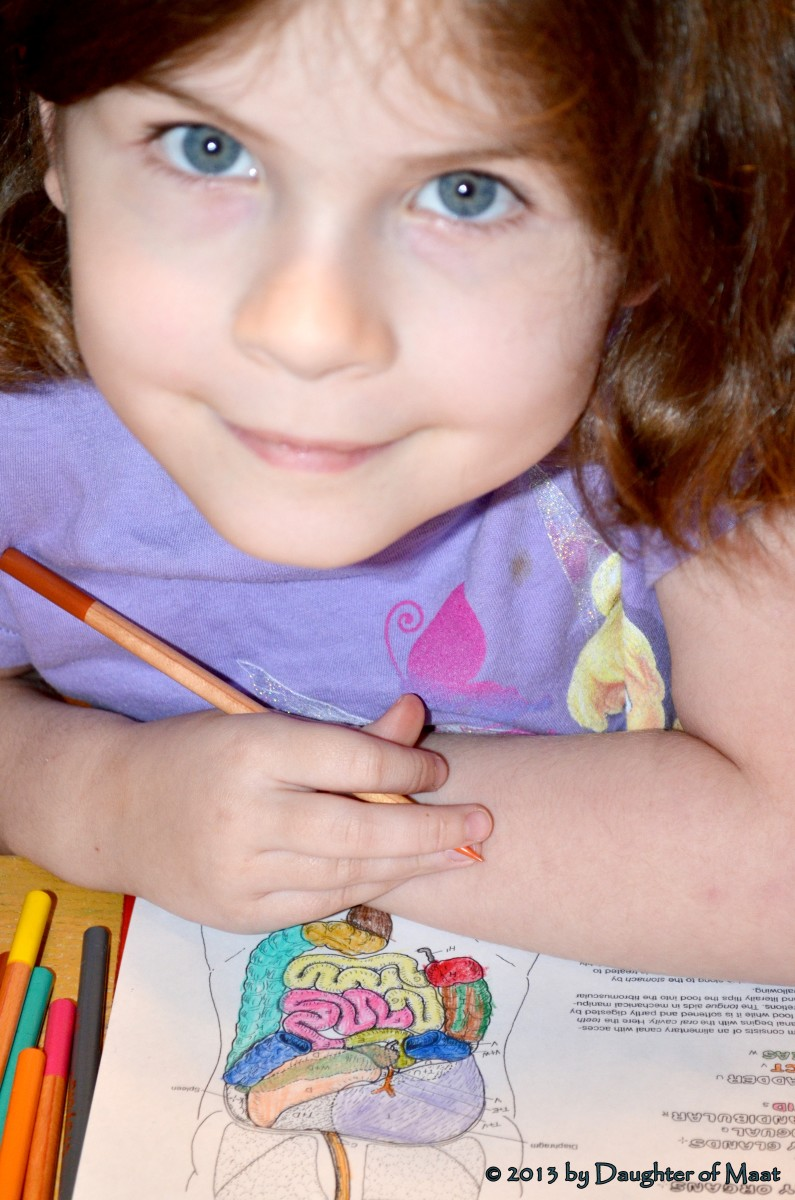 Reasons I Decided to Homeschool My Daughter