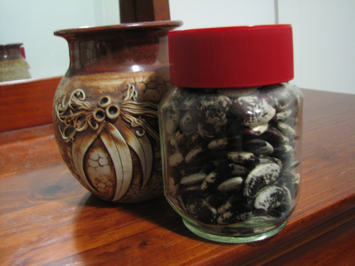 Madagascar Bean Seeds Stored in an Airtight Jar