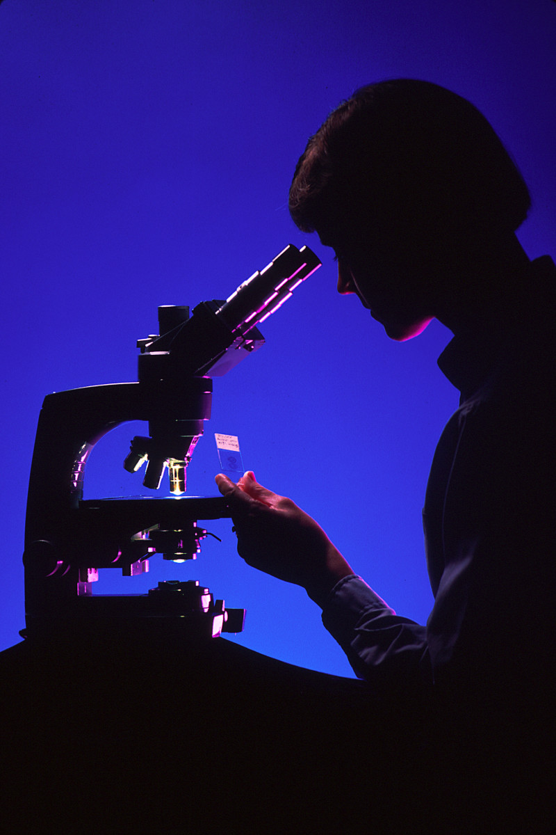 Pathologist looks at a slide prepared in a histology laboratory.