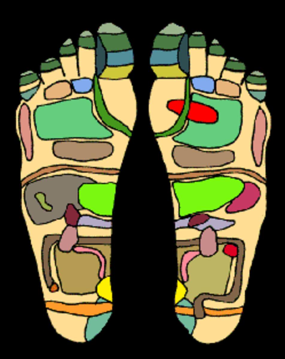 Foot Reflexology Techniques