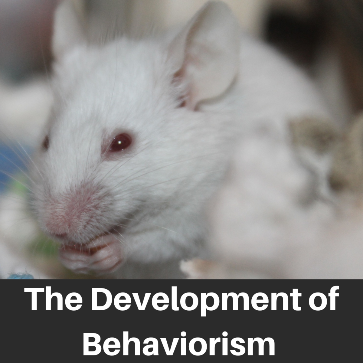 Watson, Pavlov, Thorndike, Skinner and the Development of Behaviorism