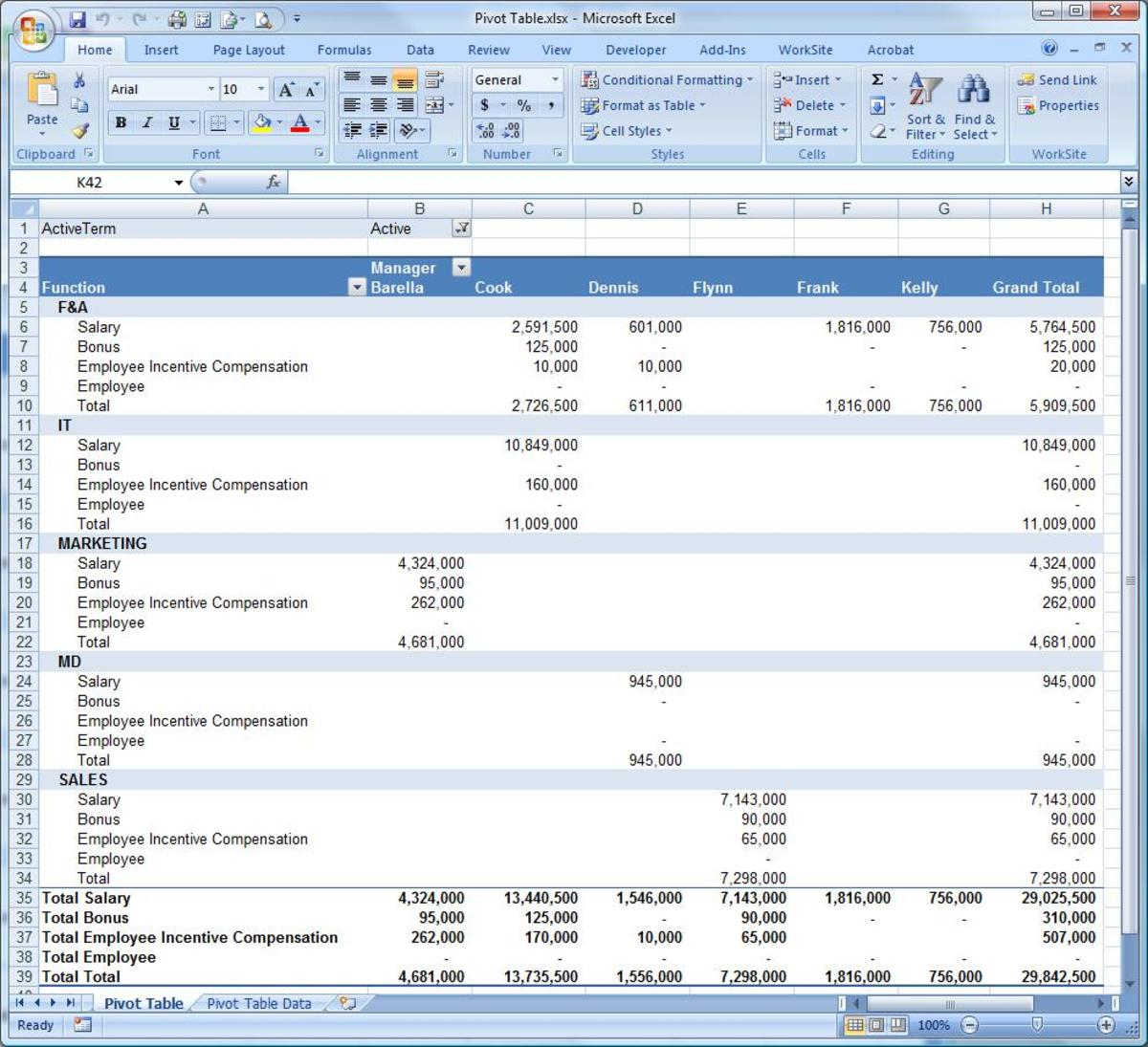 A full pivot report using the Microsoft Excel pivot table functionality.