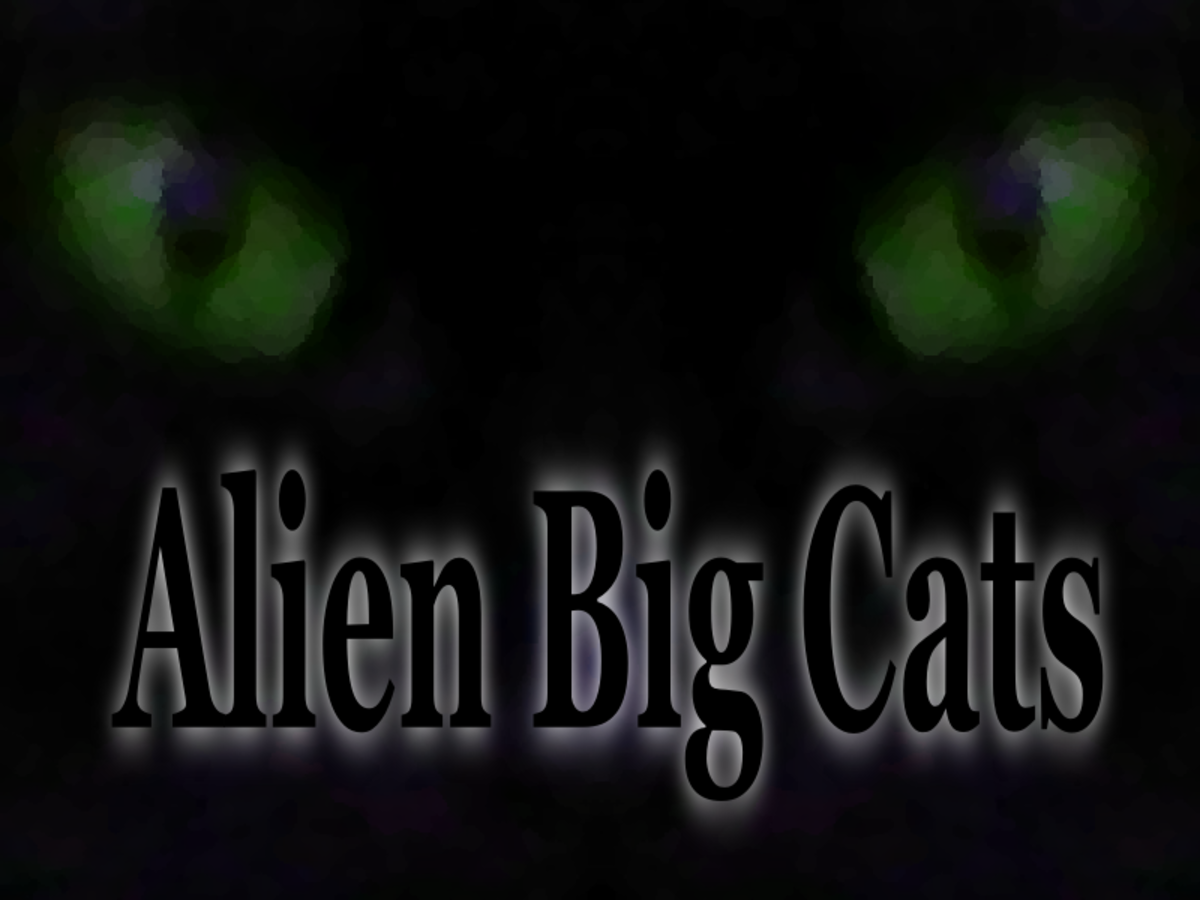 Alien Big Cats in the UK and Around the World