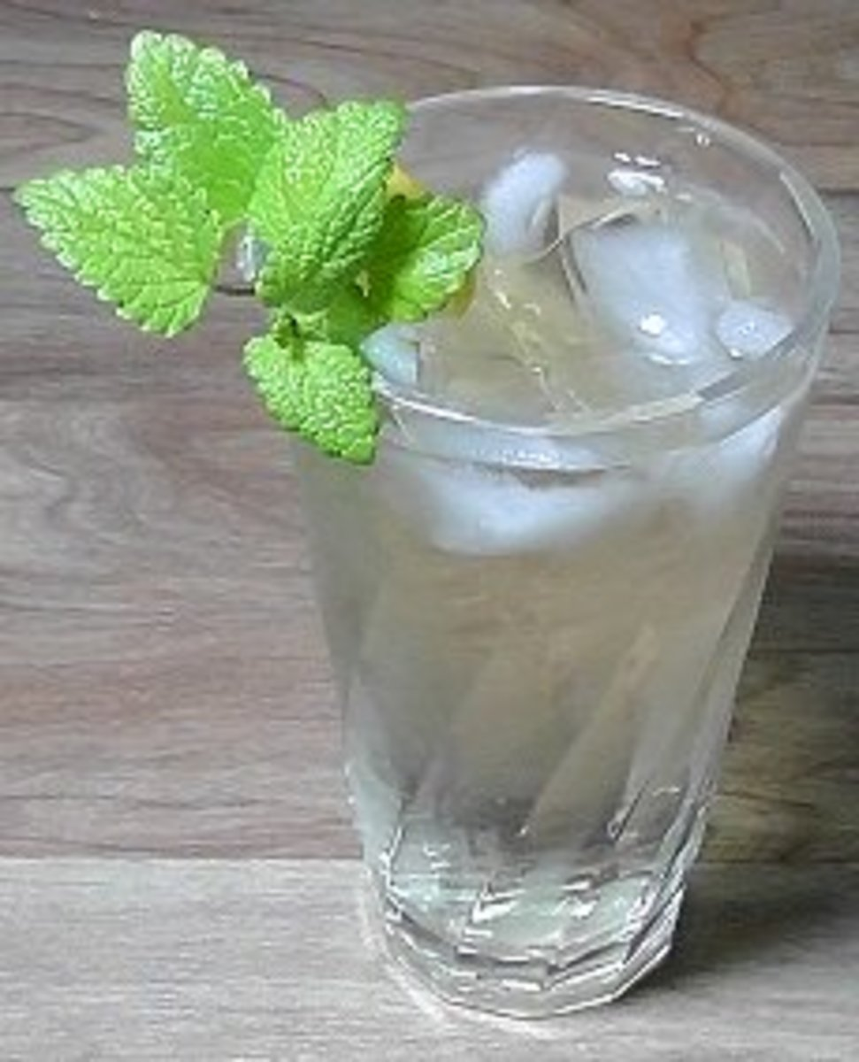 Recipe for Fresh Iced Lemon Balm Tea