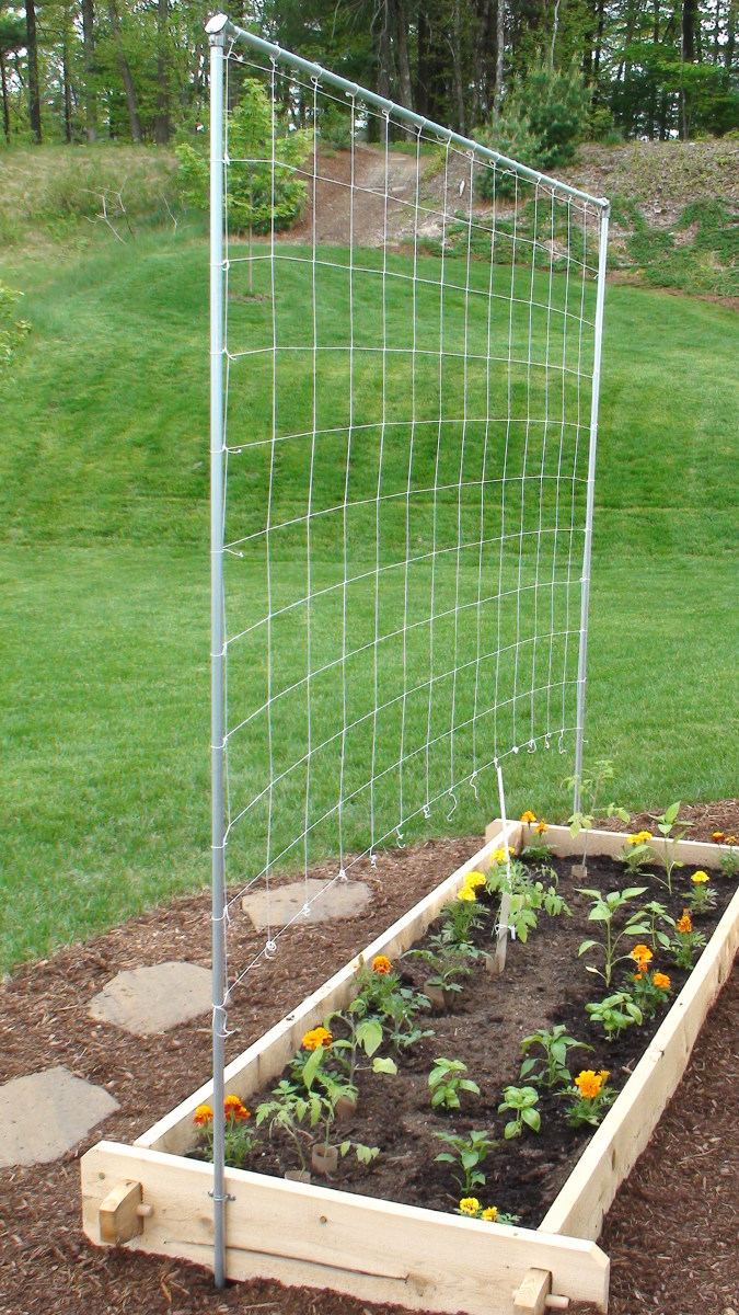How to build your own simple trellis for a tomato and for Creating a vegetable garden