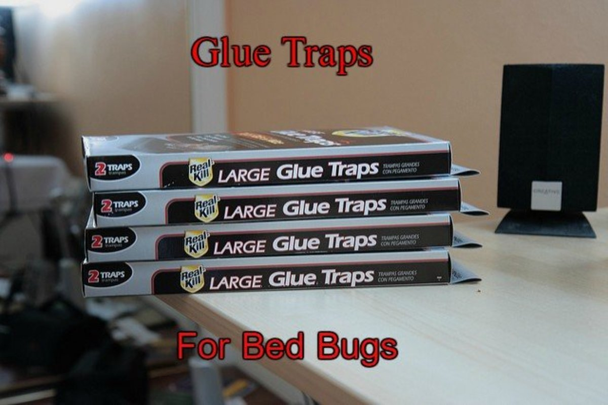 Glue traps, such as BuggyBeds and Eco-Keeper, protect people from bed bugs.