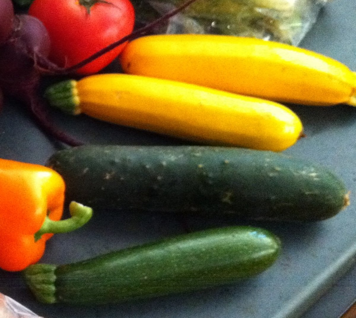 There are lots of things you can do with the extra zucchini from your garden.