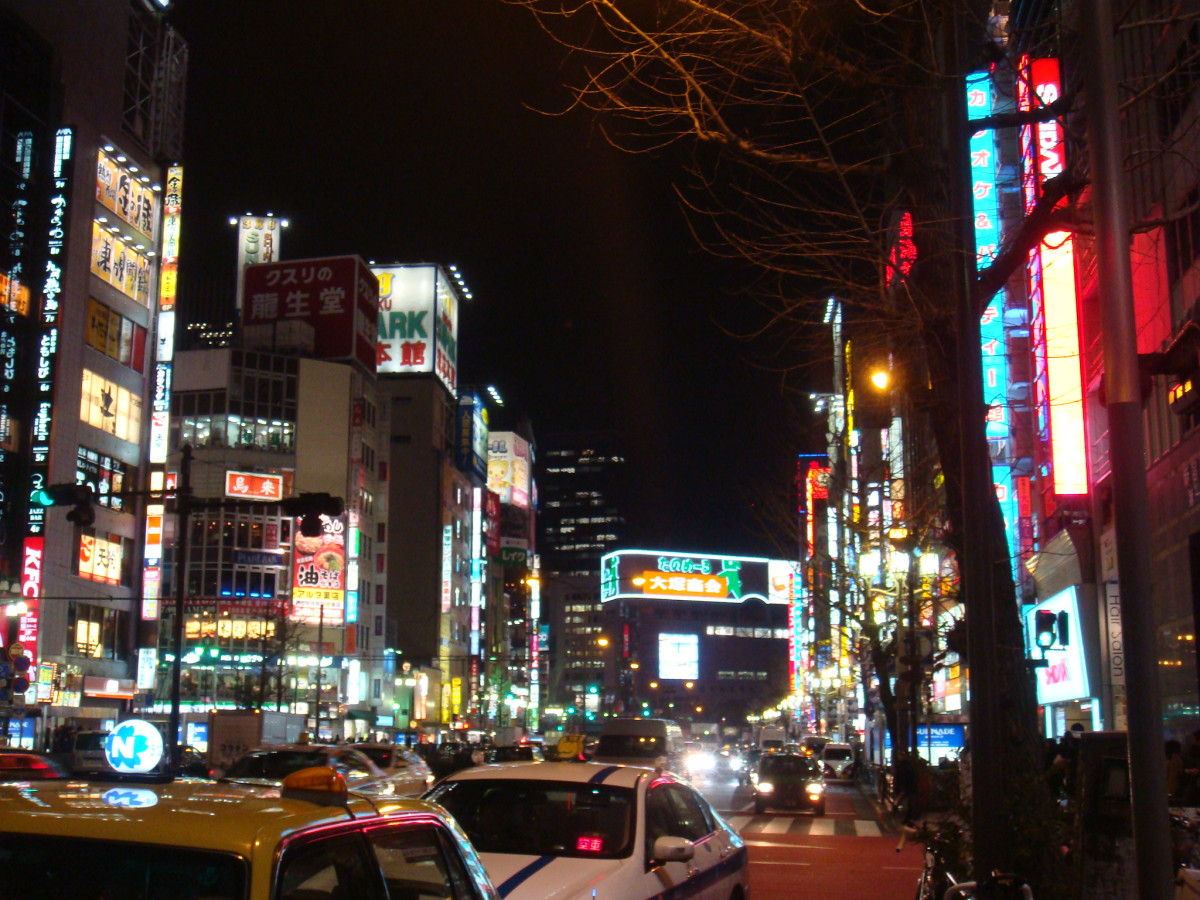 This is the image of Tokyo pretty much everyone has in their minds. This is definitely NOT the only Tokyo one can get to enjoy and love.
