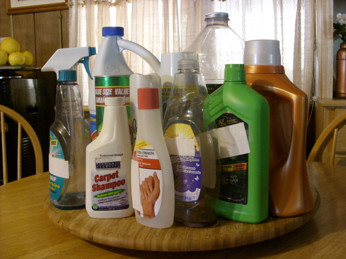 Common household cleaning products found in my home.