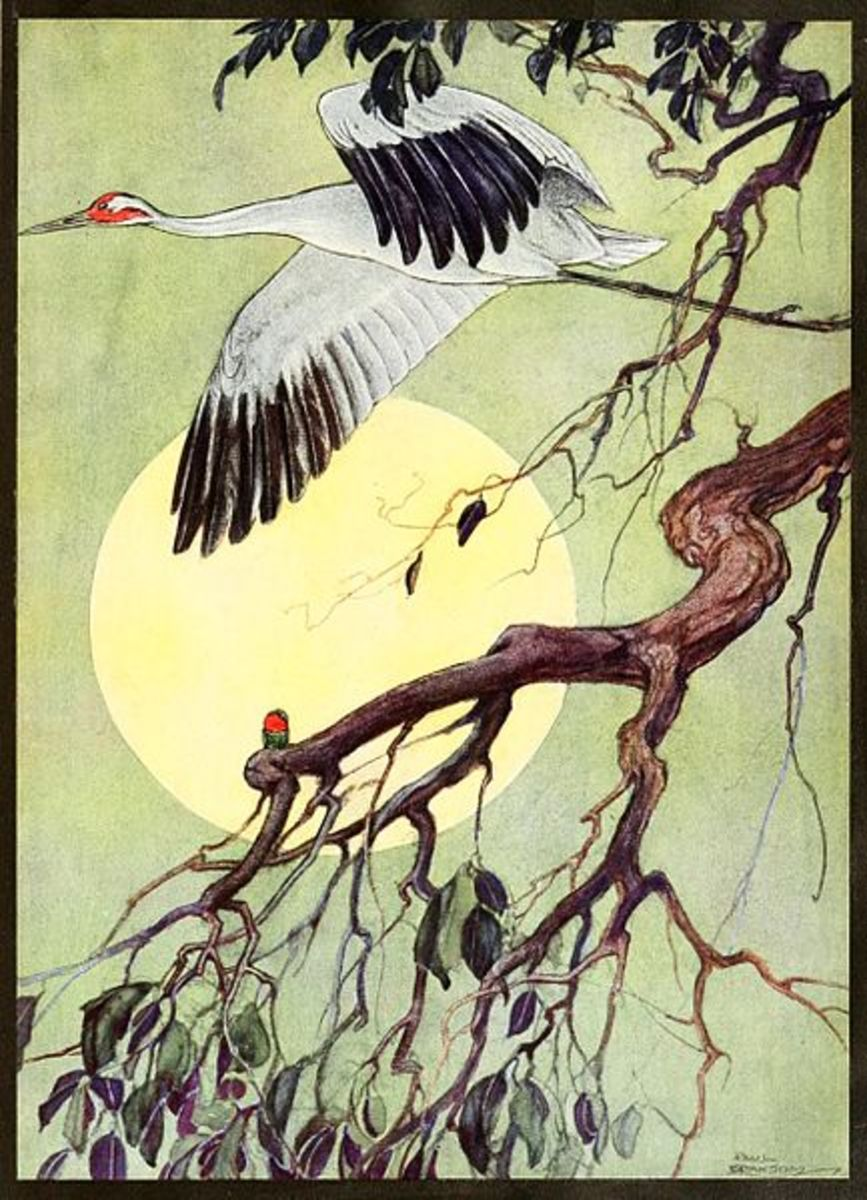 Animal Spirits Totems Cranes Exemplore