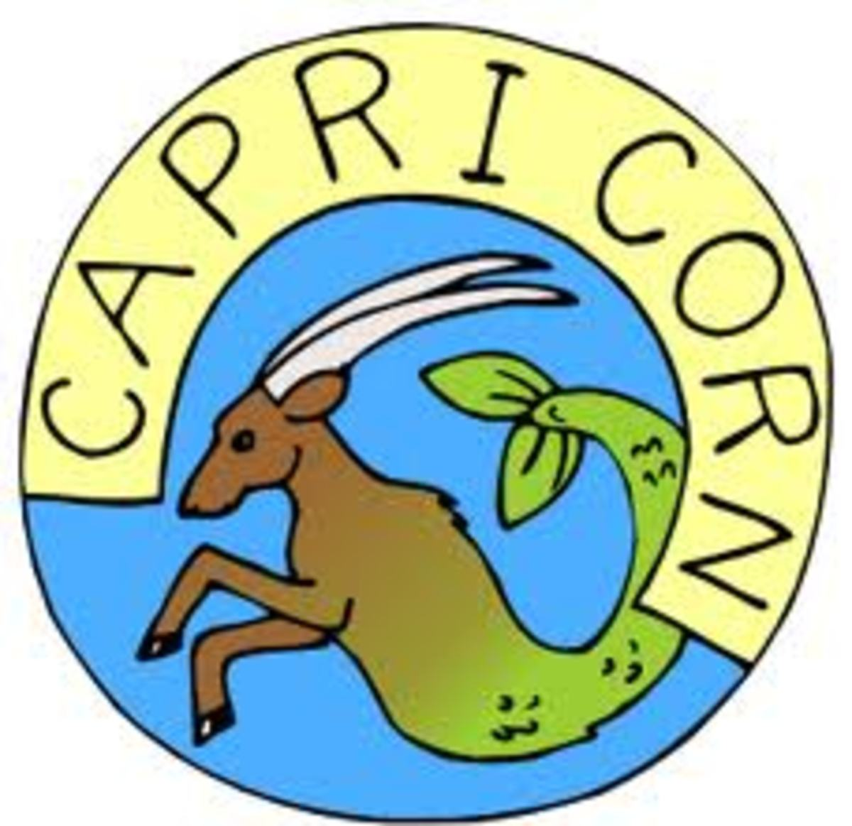 Characteristics of People Born Under The Capricorn Zodiac