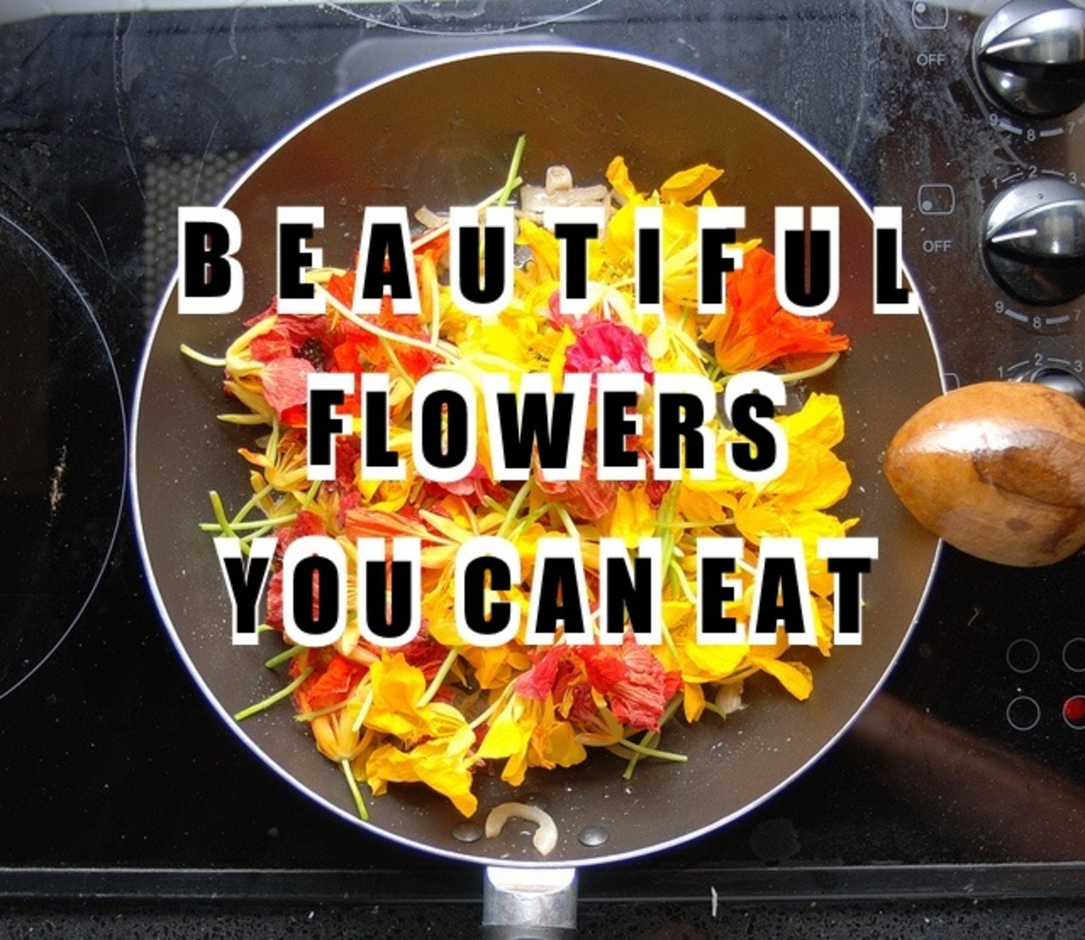 25 Flowers You Can Eat
