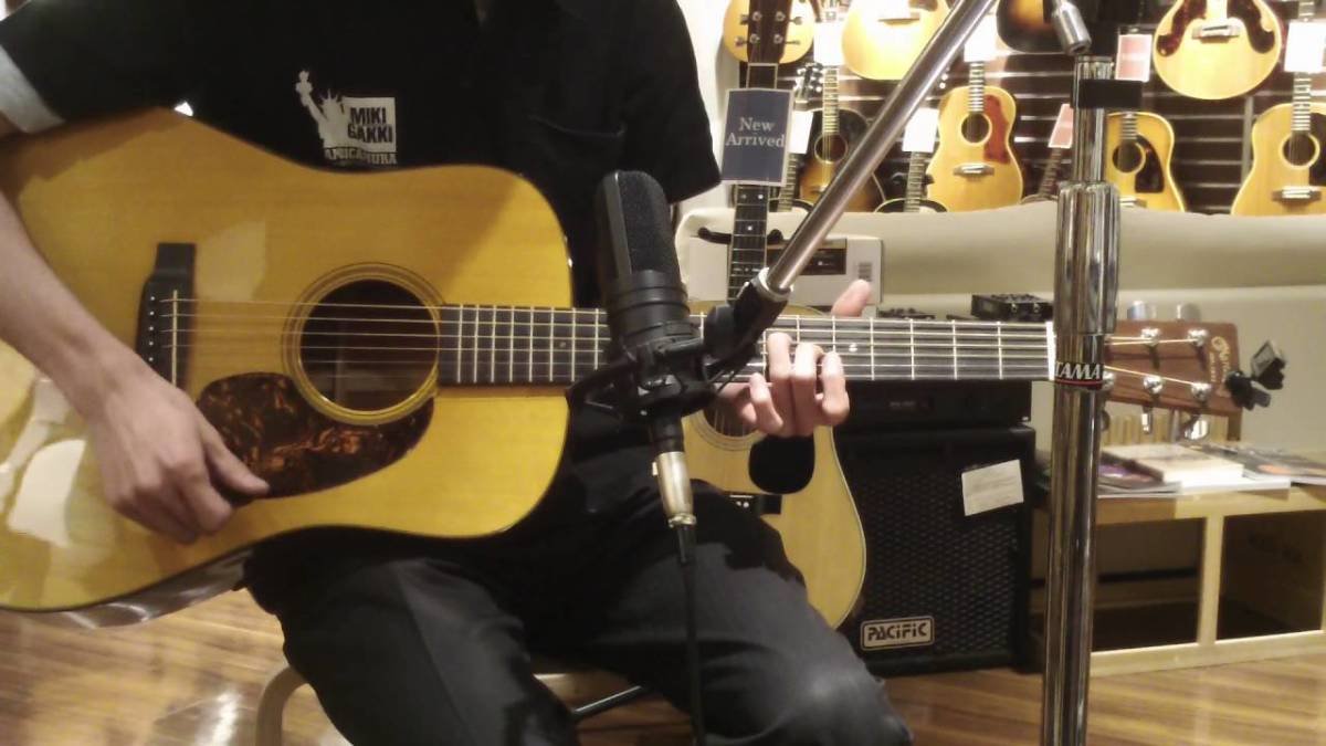 The Martin D-16 Acoustic Guitar