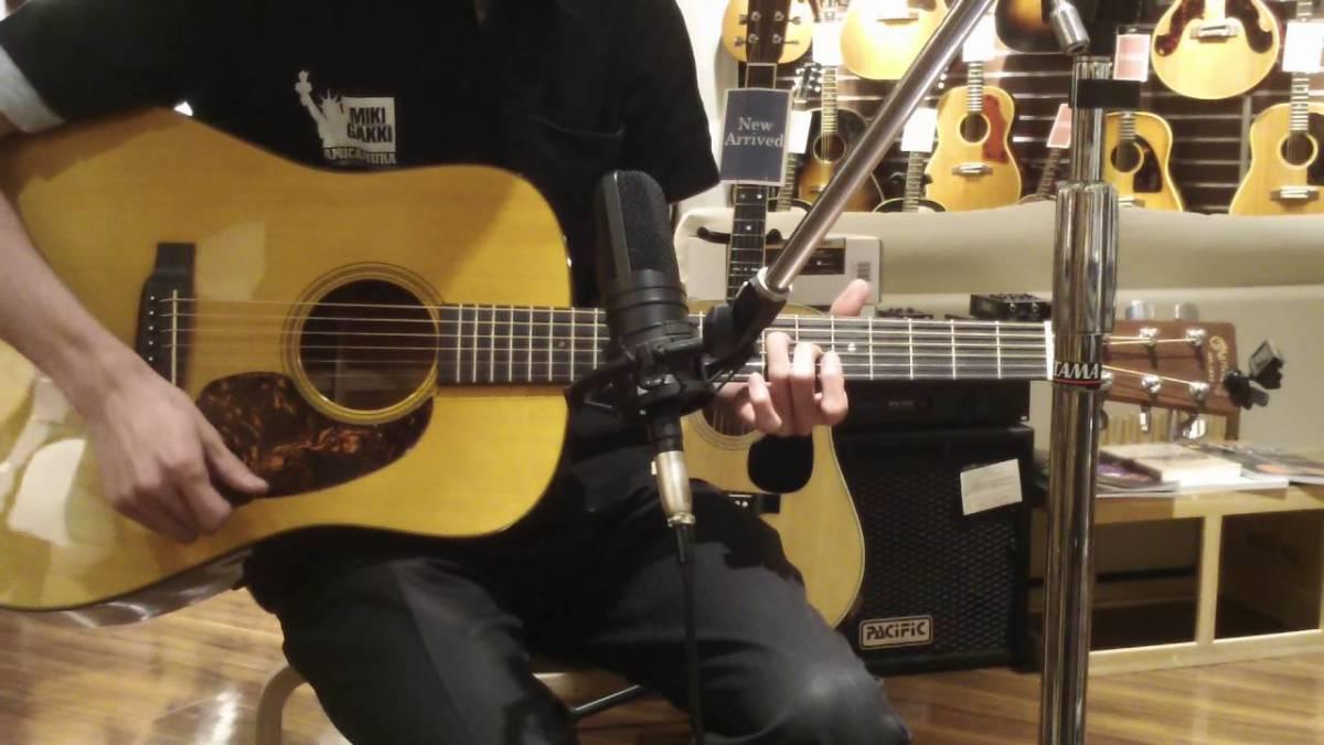 The Martin D-16 Acoustic Guitar