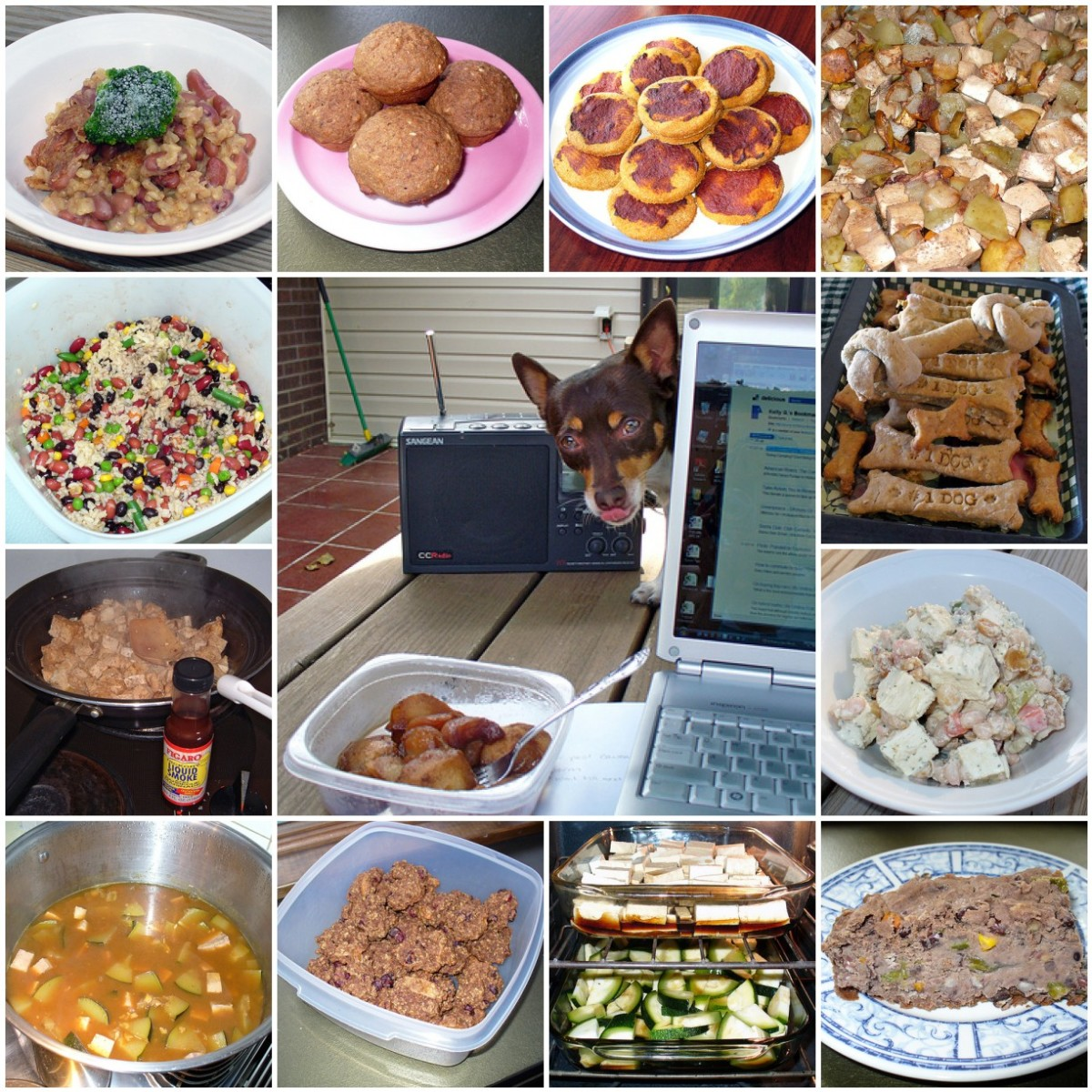 2 Healthy Homemade Dog Food Recipes