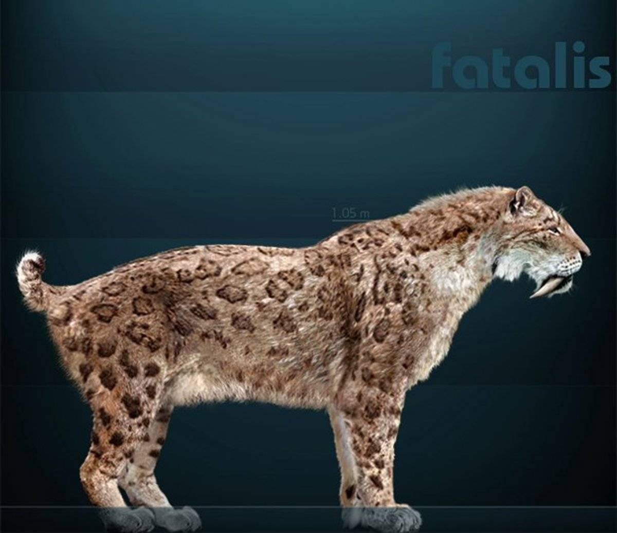 A reconstruction of Smilodon Fatalis- the species that lived in both North and South America