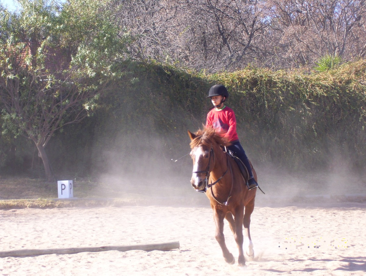 How to Fall off a Horse Safely, Without Injury